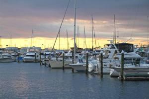The Marina at Henderson's Wharf